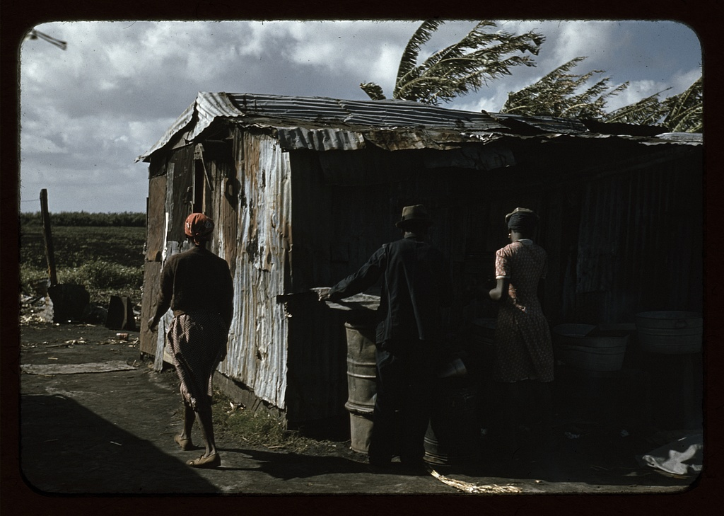 Negro migratory workers and one shack