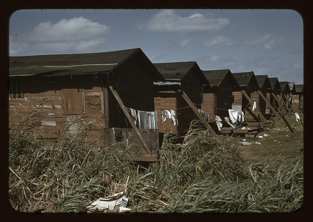 Houses which have been condemned by the Board of Health but are still occupied by Negro migratory workers
