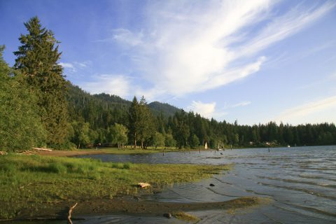 Am Lake Quinault